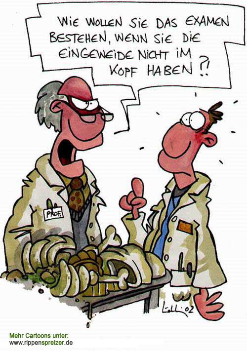 Vorphysikum & Anatomie:S Zahnmediziner hier …