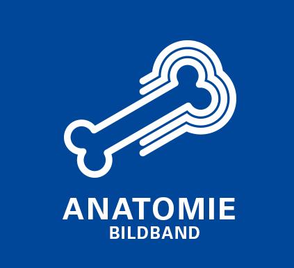 Anatomiebildband