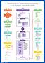 Strukturierte Patientenversorgung Präklinik